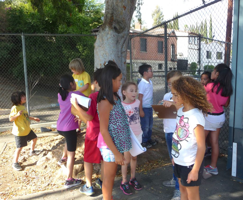 By making observations in the schoolyard, students learn new science concepts and employ problem solving in the field.